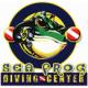 Phi Phi Sea Frog