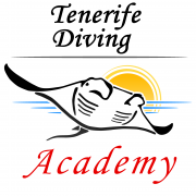 Tenerife Diving Academy square